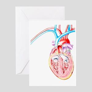 Artwork of heart in congestive heart Greeting Card