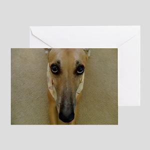 Look of Innocence  Greeting Card