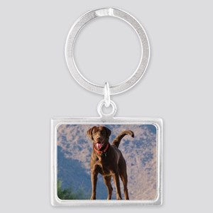 Lovable Chocolate Lab Landscape Keychain