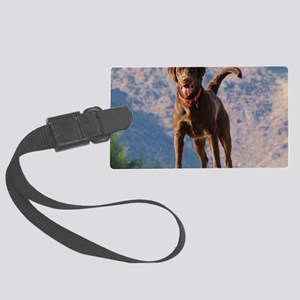 Lovable Chocolate Lab Large Luggage Tag