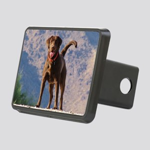 Lovable Chocolate Lab Rectangular Hitch Cover