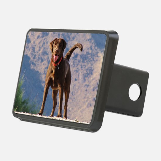 Lovable Chocolate Lab Hitch Cover