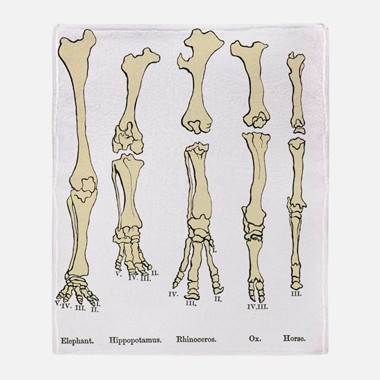 Comparison of animal feet, historica Throw Blanket