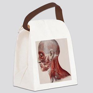 Facial nerves Canvas Lunch Bag