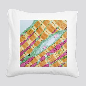 Cardiac muscle, TEM Square Canvas Pillow