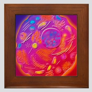 Computer graphic of animal cell Framed Tile