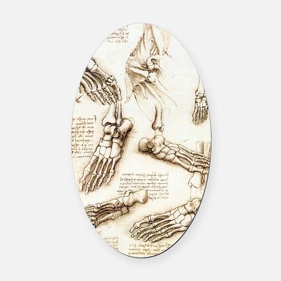 Foot anatomy by Leonardo da Vinci Oval Car Magnet