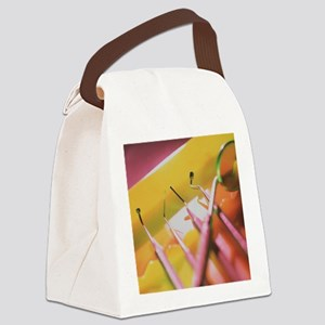 Dentistry equipment Canvas Lunch Bag
