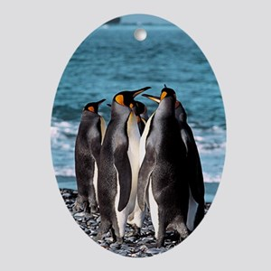 King penguins Oval Ornament