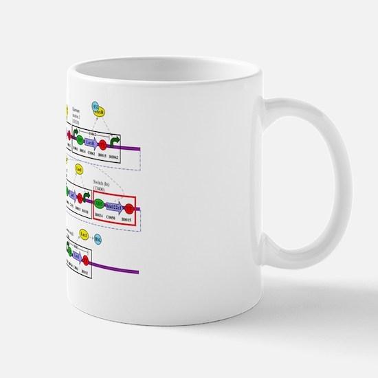 Genetic circuit diagram Mug