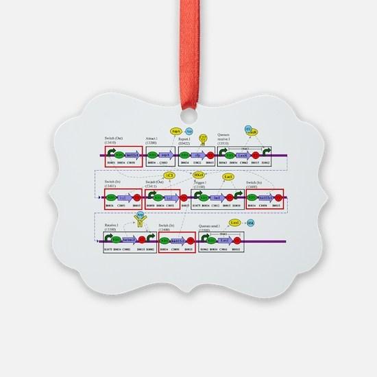 Genetic circuit diagram Ornament