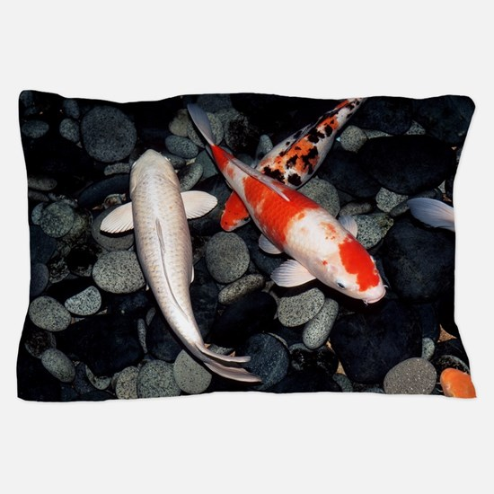 Koi carp in a pond Pillow Case
