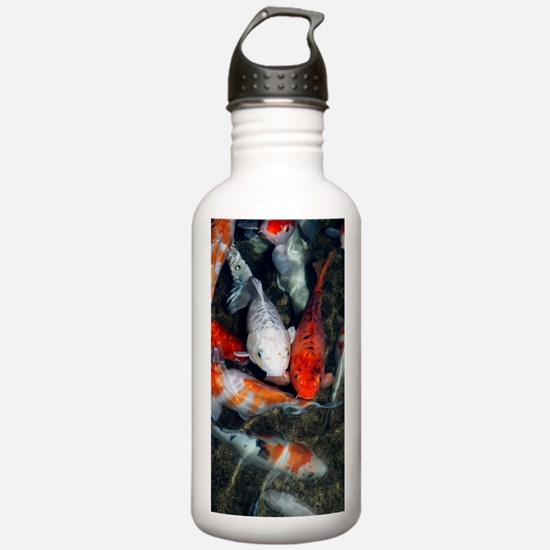 Koi carp in a pond Water Bottle
