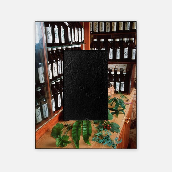 Herbal pharmacy Picture Frame