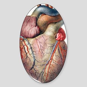 Heart Sticker (Oval)