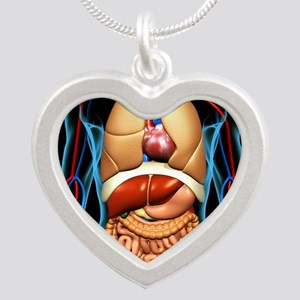 Human anatomy, artwork Silver Heart Necklace