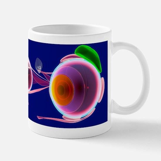 Human eye anatomy, artwork Mug