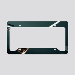 Bee artificial insemination License Plate Holder