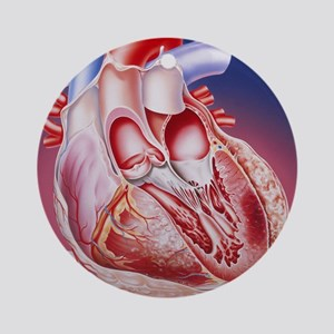 Heart after heart attack Round Ornament