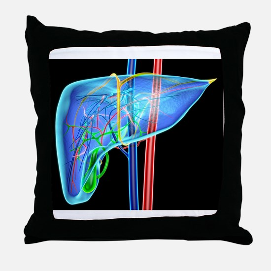 Human liver, artwork Throw Pillow