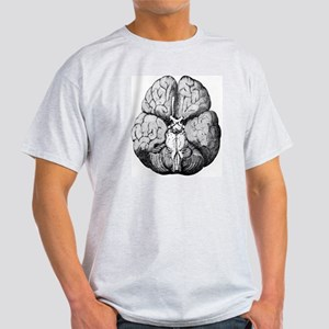 Illustration of Blood supply to the  Light T-Shirt