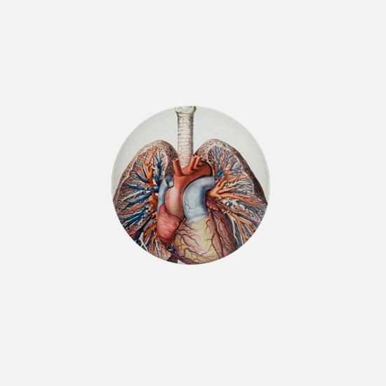 Lung blood vessels Mini Button