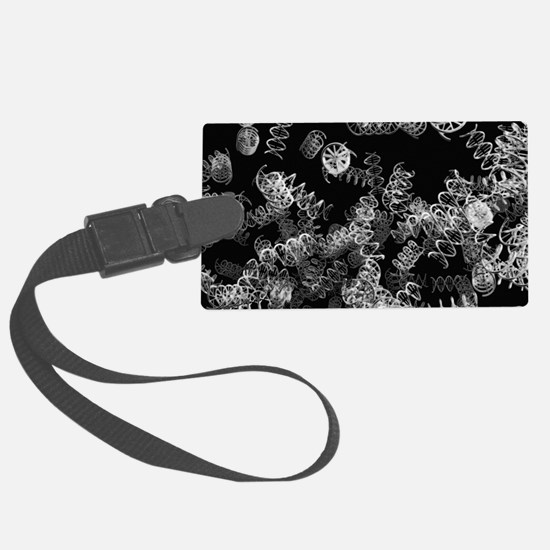DNA helices Luggage Tag