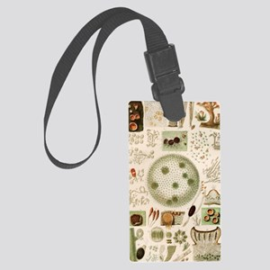 Plant and fungi microscopy, 19th Large Luggage Tag