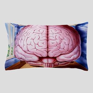 Artwork of human brain enclosed in dre Pillow Case