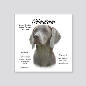 "Weimaraner Square Sticker 3"" x 3"""