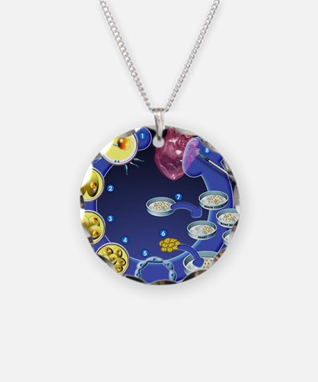 Stem cell research Necklace Circle Charm
