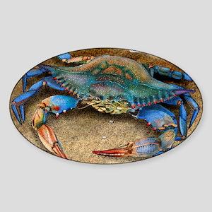 Atlantic Blue Crab Sticker (Oval)
