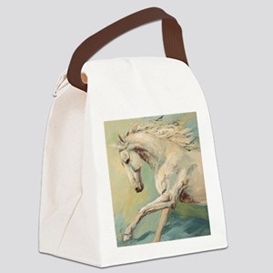Free Style painting by Janet Ferr Canvas Lunch Bag