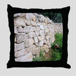 Limestone wall Throw Pillow