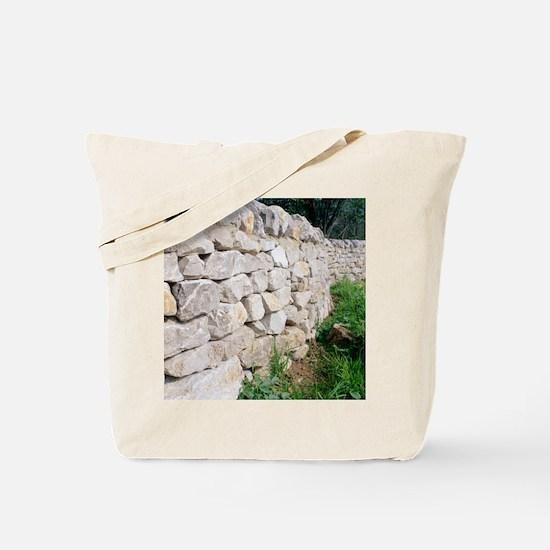 Limestone wall Tote Bag