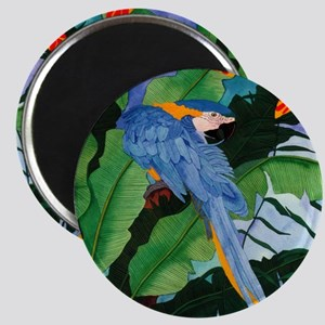 Blue and Gold Macaw Preening Magnet