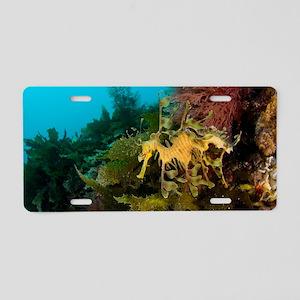 Leafy sea dragon Aluminum License Plate