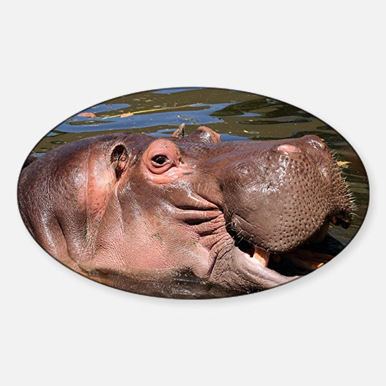 Happy Hippo Sticker (Oval)