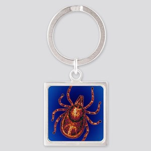 Lyme disease tick Square Keychain