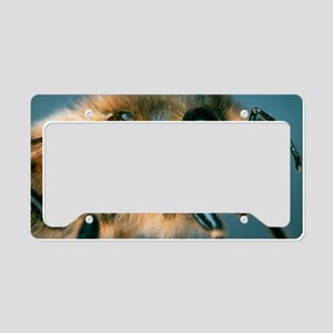 Macrophpoto of the head of a  License Plate Holder