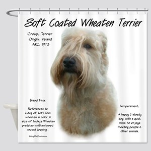 Soft Coated Wheaten Terrier Shower Curtain