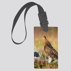 Male red grouse calling Large Luggage Tag