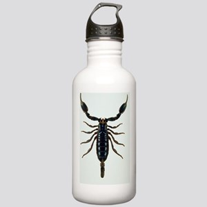 Malaysian forest scorp Stainless Water Bottle 1.0L