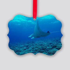 Manta ray Picture Ornament