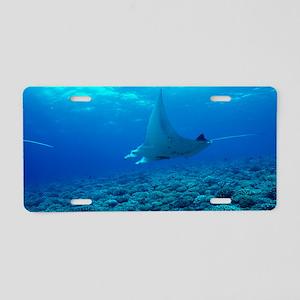 Manta ray Aluminum License Plate