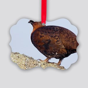 Male red grouse Picture Ornament