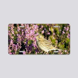 Meadow pipit Aluminum License Plate
