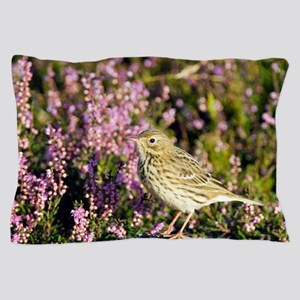 Meadow pipit Pillow Case