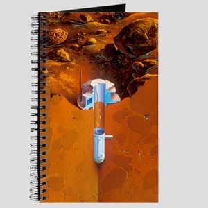 Martian subsurface probe Journal