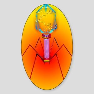 Bacteriophage Sticker (Oval)